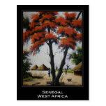 Senegalese Art Postcard