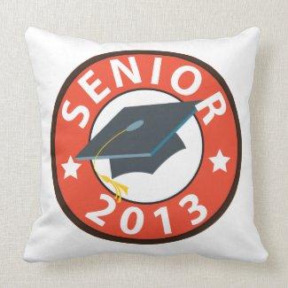 Senior 2013 pillow
