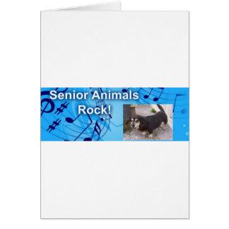 Senior Dogs Rock Card