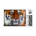Señor de las selvas indias, el tigre de Bengala Sello