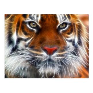 Señor de las selvas indias, el tigre de Bengala Postal