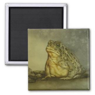 Señor Toad Magnet Imán Cuadrado