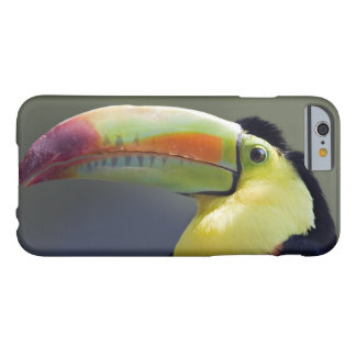 Senor Tuco iPhone 6 Case