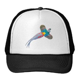 Señora Amherst Pheasant Mesh Hat Gorro De Camionero