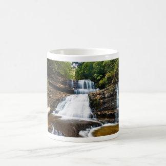 Señora Barron Falls en parque nacional del campo Taza