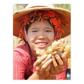 Señora birmana Picking Ginger Tarjeta Postal