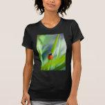 Señora Bug en la cuchilla de la hierba Camiseta