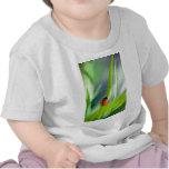 Señora Bug en la cuchilla de la hierba Camisetas