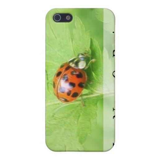 Señora Bug en la hoja de Feverfew iPhone 5 Carcasas