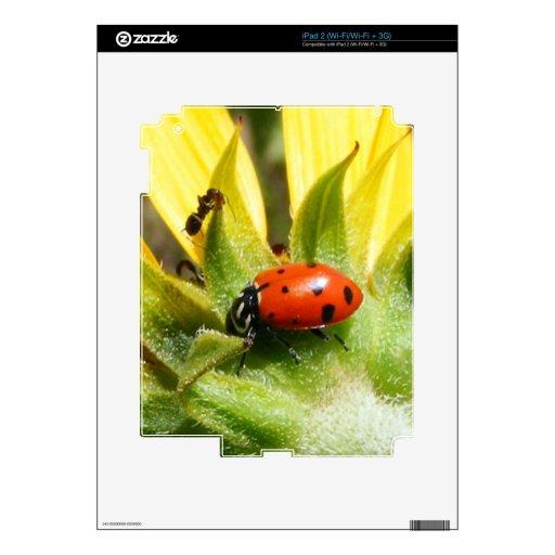 Señora Bug iPad 2 Skin