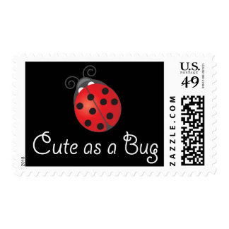 Señora Bug - lindo como insecto Envio