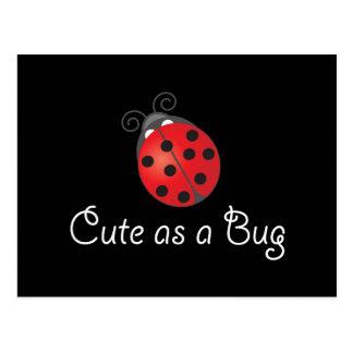 Señora Bug - lindo como insecto Postal