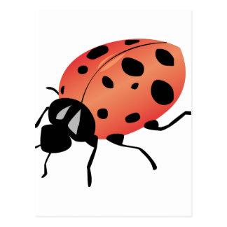 Señora Bug Postales
