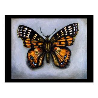 Señora Colección-Pintada insecto Butterfly Postal