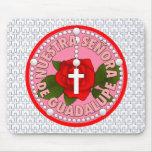 Señora de Guadalupe Tapetes De Ratones