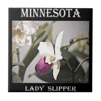 Señora deslizador de Minnesota