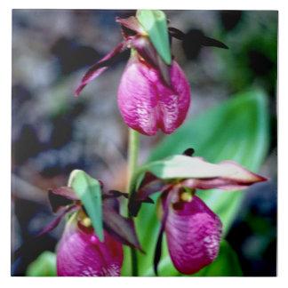 Señora deslizador I, placer verde rosado del Azulejo Cuadrado Grande