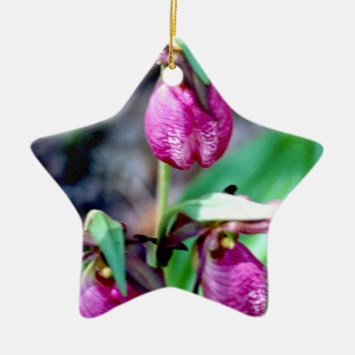 Señora deslizador I, placer verde rosado del Ornamente De Reyes