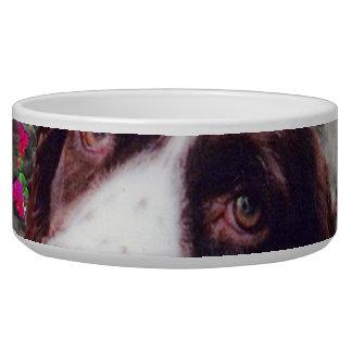 Señora en mariposas - perro del perro de aguas de  bol para perro