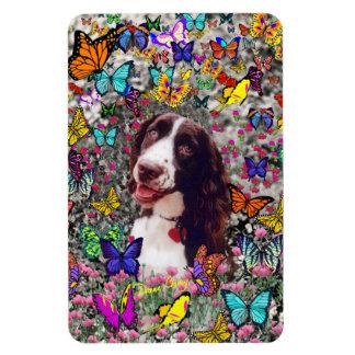 Señora en mariposas - perro del perro de aguas de  iman rectangular