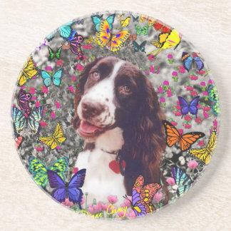 Señora en mariposas - perro del perro de aguas de posavasos personalizados