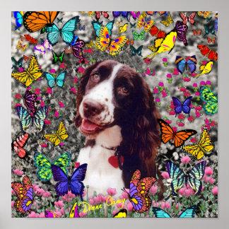 Señora en mariposas - perro del perro de aguas de póster
