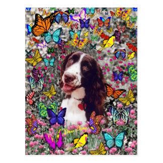Señora en mariposas - perro del perro de aguas de tarjeta postal