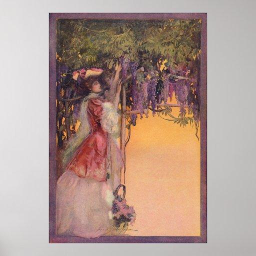 Señora en un jardín de las glicinias poster