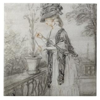 Señora en una terraza que tiende una planta del cl azulejo cuadrado grande