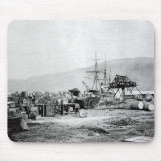 Señora Franklin Bay Expedition 1880s Alfombrillas De Ratones