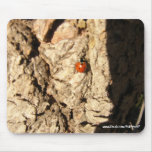 Señora Insecto-Mousepad Tapetes De Ratones