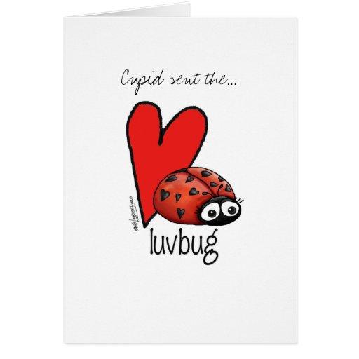 Señora Lashes Lovebug - tarjeta de la tarjeta del