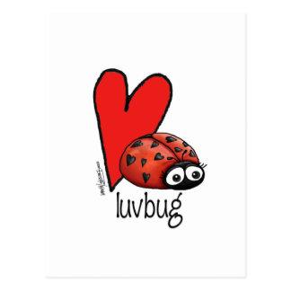Señora Lashes Lovebug - tarjeta de la tarjeta del Postales