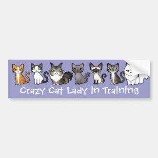 Señora loca del gato en el entrenamiento (diseñe pegatina para auto