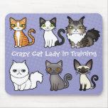 Señora loca del gato en el entrenamiento (diseñe tapete de ratón