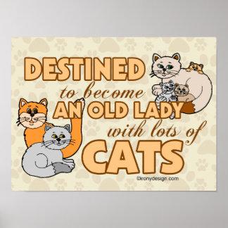 Señora loca futura Funny Saying Design del gato Póster