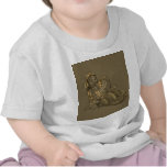 Señora Merewalds Pets Camiseta