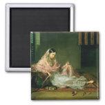 Señora musulmán Reclining, 1789 (aceite en lona) Iman De Frigorífico