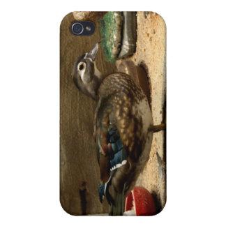 Señora pato de madera iPhone 4 cobertura