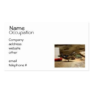 Señora pato de madera tarjetas de visita