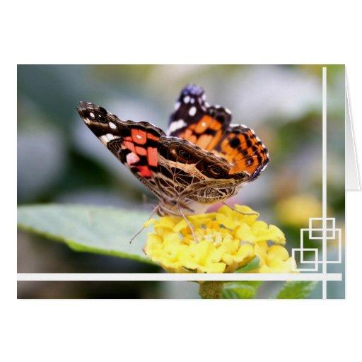 Señora pintada americano Butterfly Blank Notecard Tarjeta De Felicitación