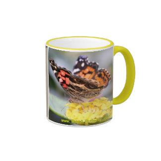 Señora pintada americano Butterfly Lifecycle Taza De Dos Colores