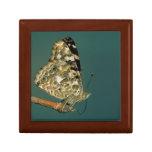Señora pintada Butterfly Close-up Cajas De Regalo