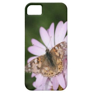Señora pintada Butterfly en la flor rosada iPhone 5 Protectores