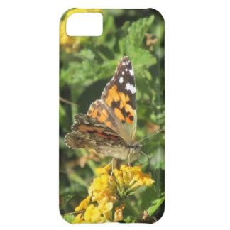 Señora pintada Butterfly en las floraciones del La
