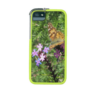 Señora pintada Butterfly en las flores púrpuras