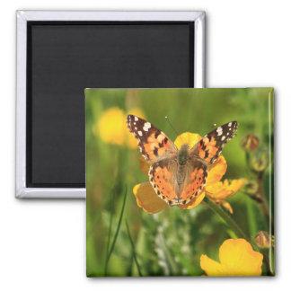 Señora pintada Butterfly Imán Cuadrado