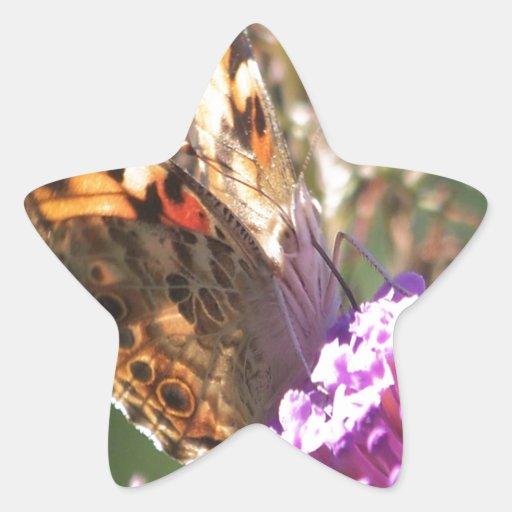 Señora pintada macro calcomanías forma de estrellaes personalizadas