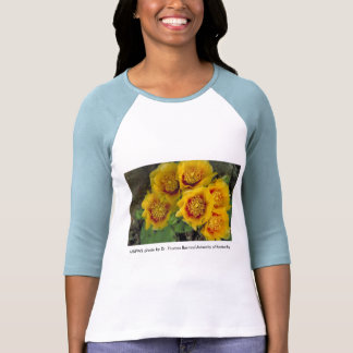 Señoras/3/4 T del higo chumbo de las floraciones Camisetas