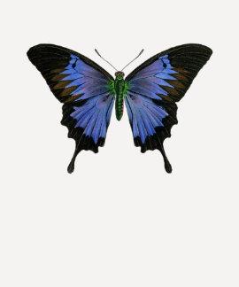 Señoras azules de la mariposa 3/4 raglán de la camisetas